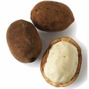 Cupuacu Fruits